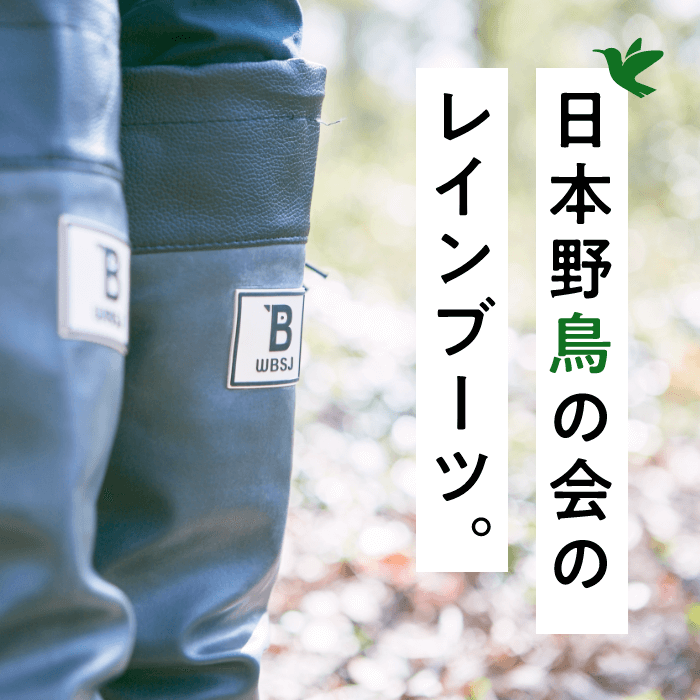 日本野鳥の会のレインブーツ。