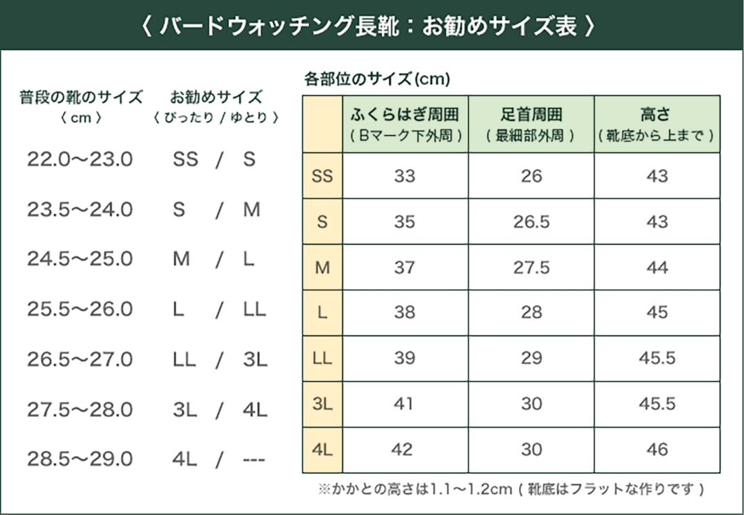 おすすめサイズ表